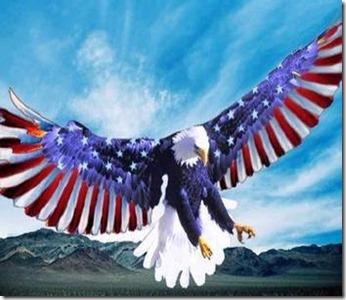 a4746522478_american_eagle_xlarge