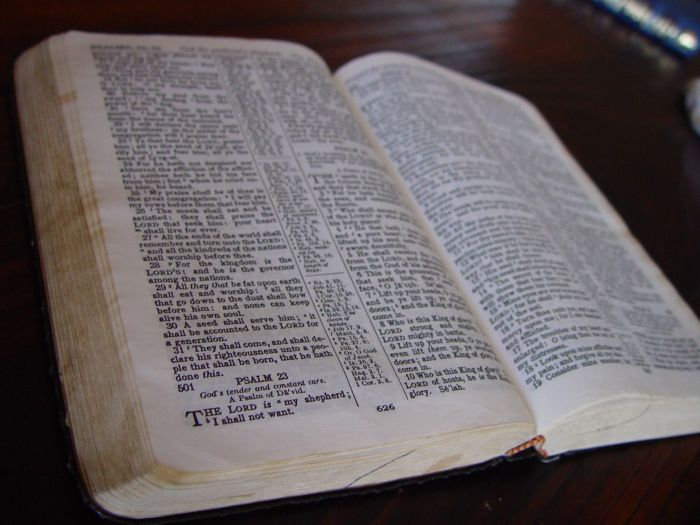 holly-bible-book