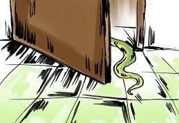 snake-door