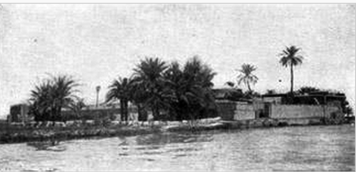 Photograph of Ezra's Tomb, early 20th century. The dome is hidden by date palms.