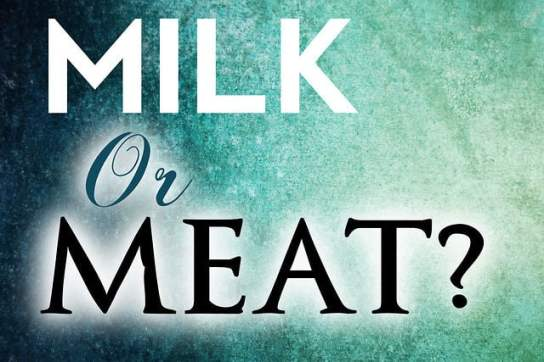 Image result for meat of the word