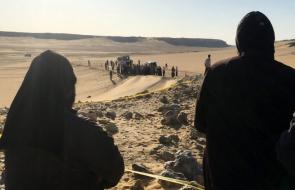 DESERT COPTIC