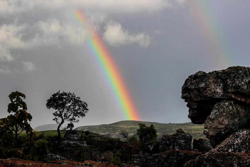 rainbow-life-public-domain